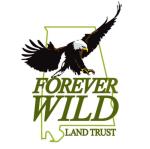new FW logo